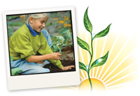 Barbara Brighter Planting